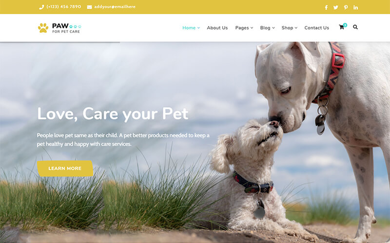 Paw - Pet Adoption Care and Shop Template
